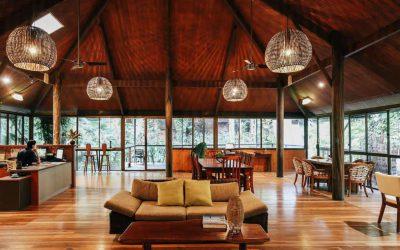 Daintree Eco Lodge 12